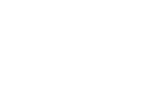 Eron Staal Logo